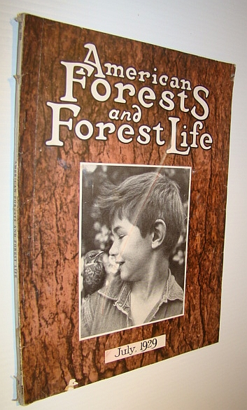 Image for American Forests and Forest Life, July, 1929 - The Magazine of the American Forestry Association